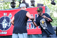 public-enemy-at-firefly-festival-8