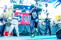 public-enemy-at-firefly-festival-2