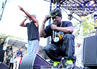 public-enemy-at-firefly-festival-13