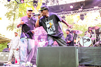 public-enemy-at-firefly-festival-15