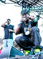 public-enemy-at-firefly-festival-14